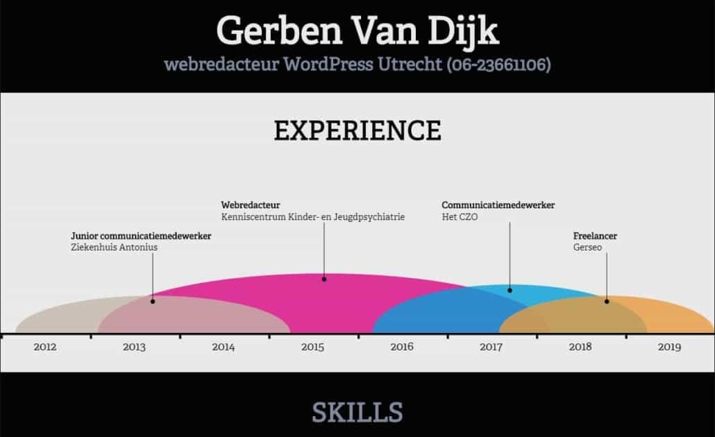 Infographic-maken-CV-Resume-tool