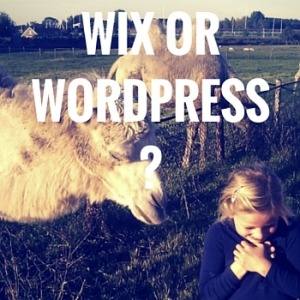 Wix-website-vs-WordPress-cms