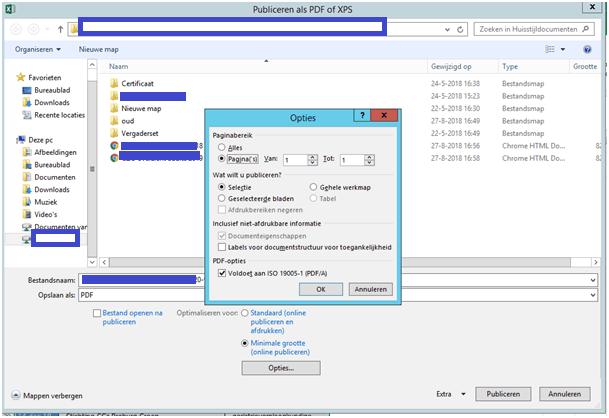 Opties-PDF-maken-in-Excel-exporteer-de-gekozen-selectie-in-het-werkblad
