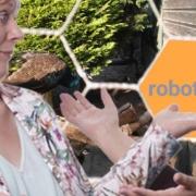Robots-txt-WordPress-bij-voorbeeld-deze-code-gebruiken