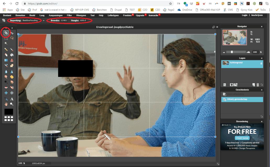 foto-bijsnijden-pixlr-editor