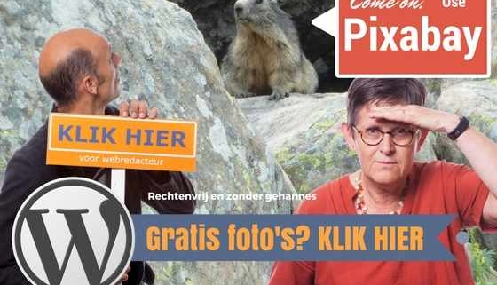 Rechtenvrije fotos gratis fotos website fotobanken bronnen