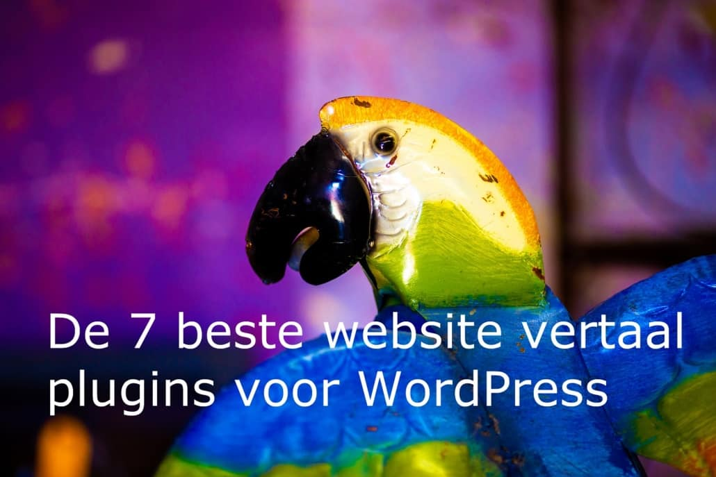 website-vertalen-WordPress