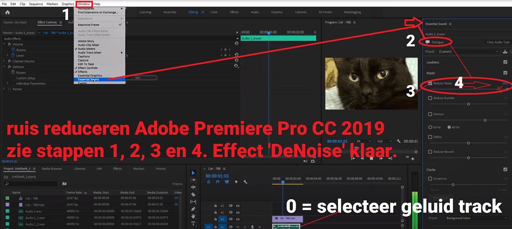 Ruis verwijderen of noise weghalen Adobe Premiere Pro CC 2019