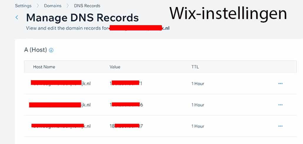 Wix DNS instellingen voorbeeld