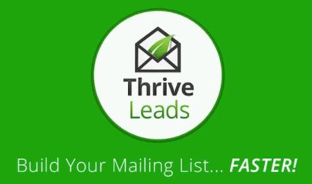 Thrive Leads Internal linken and redirections opportunities silo website wordpress